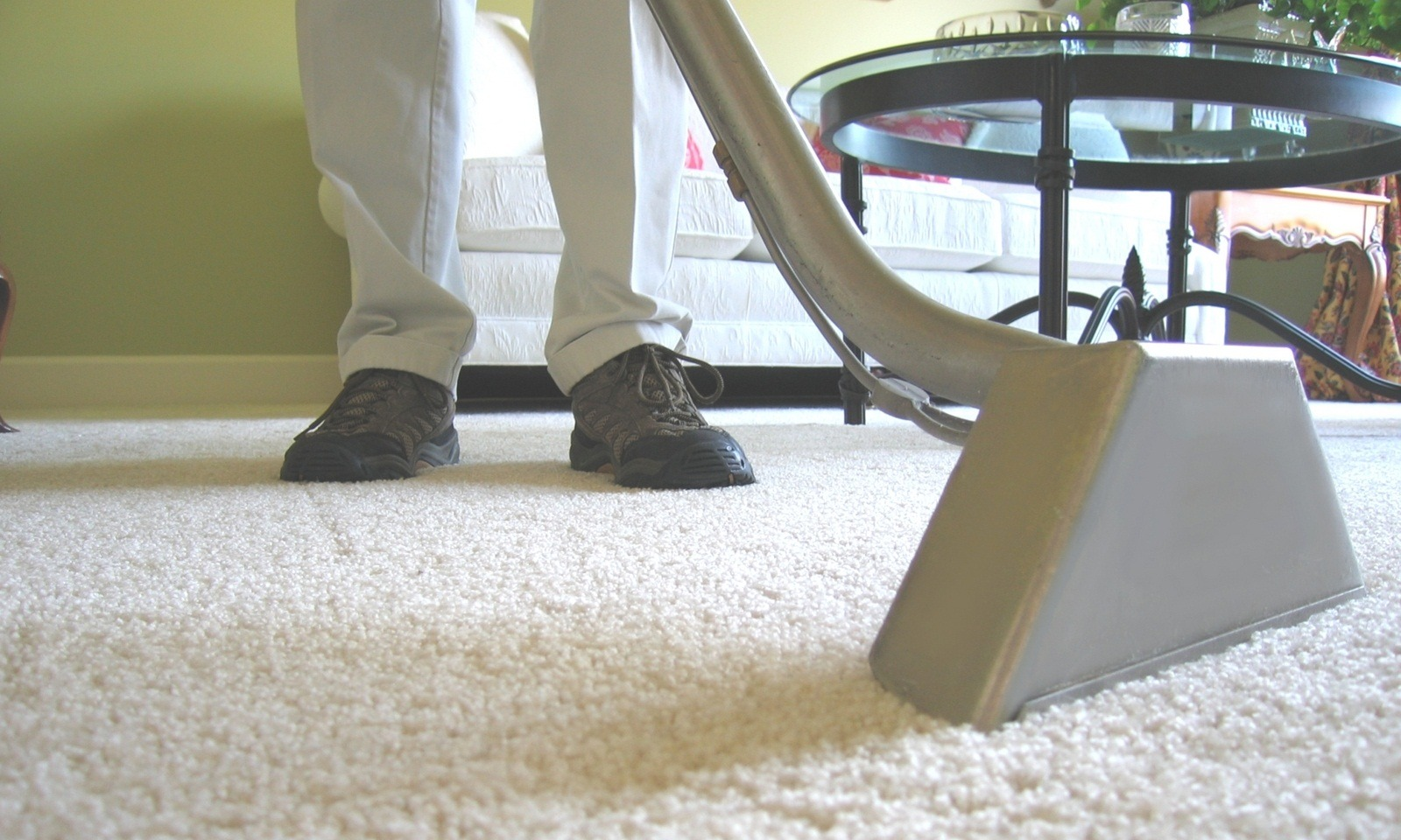 Deep-Clean Carpets And Rugs
