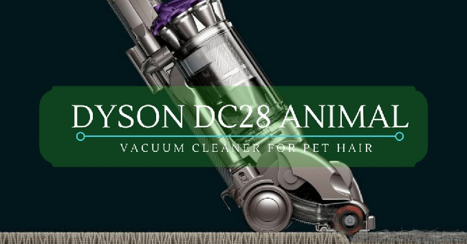 Dyson DC28 Animal