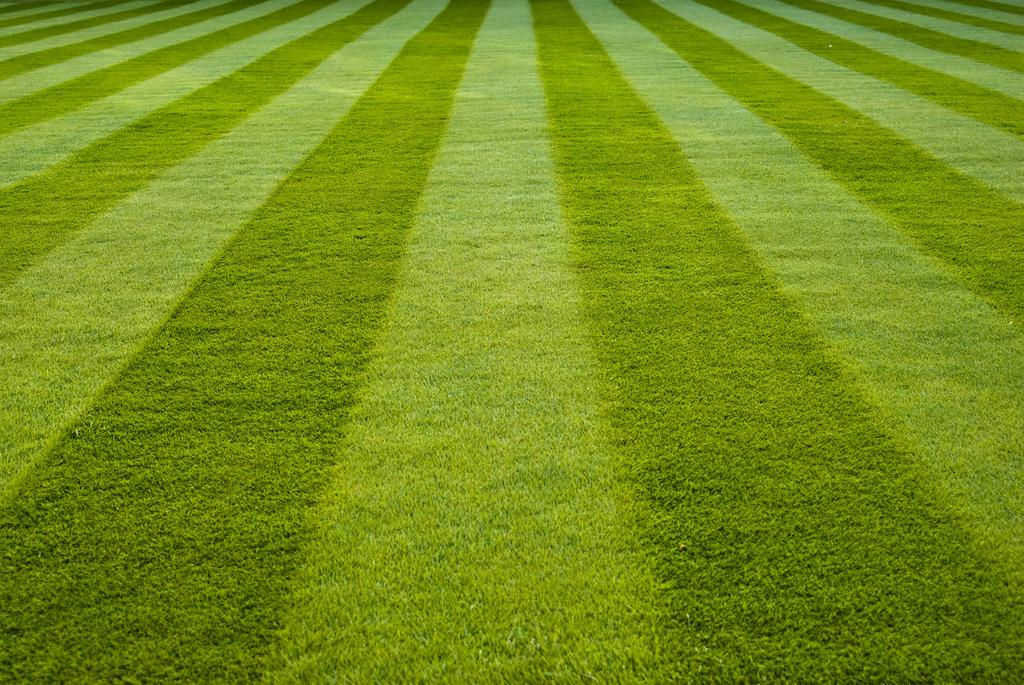 "The ""Magic"" of Lawn Stripes"