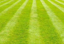 How To Stripe A Lawn Without A Striping Kit