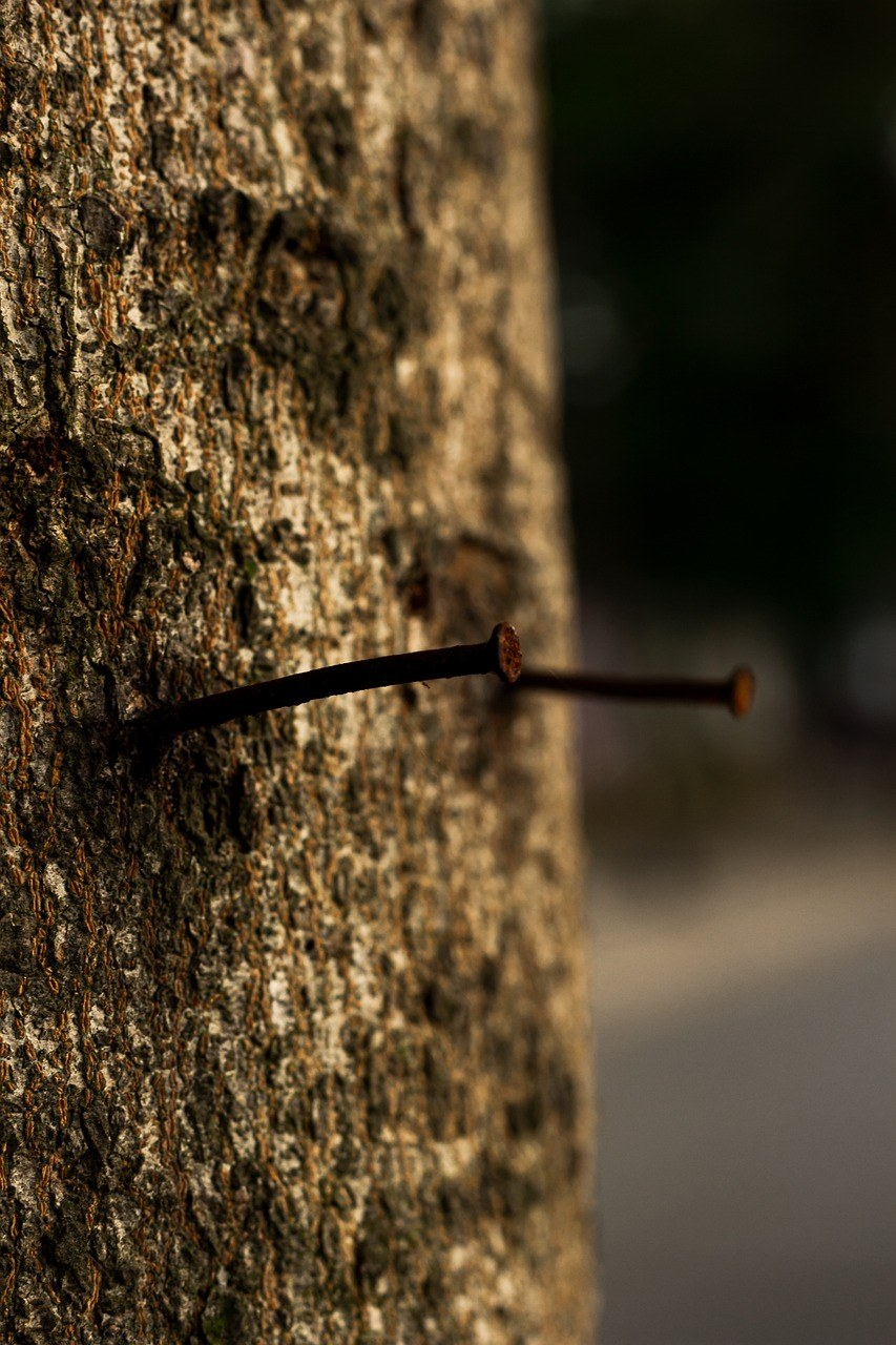 do-not-use-screws-or-nails-with-your-tree