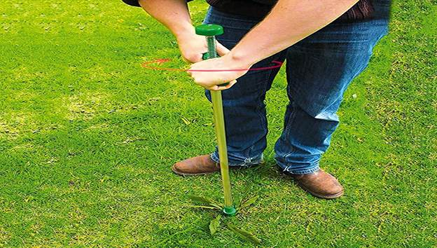 Removing Weeds from garden