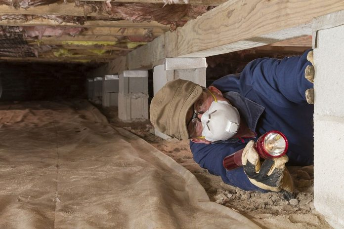 Is It a Good Idea to Inspect Your Crawl Space