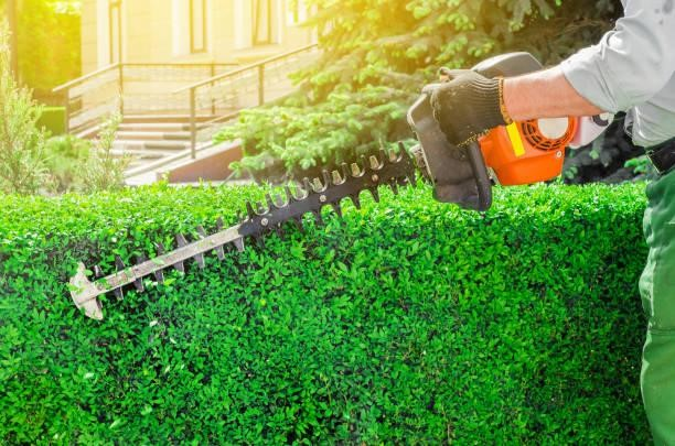 hedge-trimmer-battery