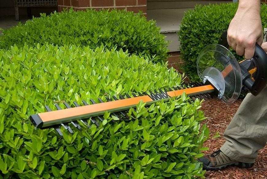 hedge-trimmer-working-with-angles