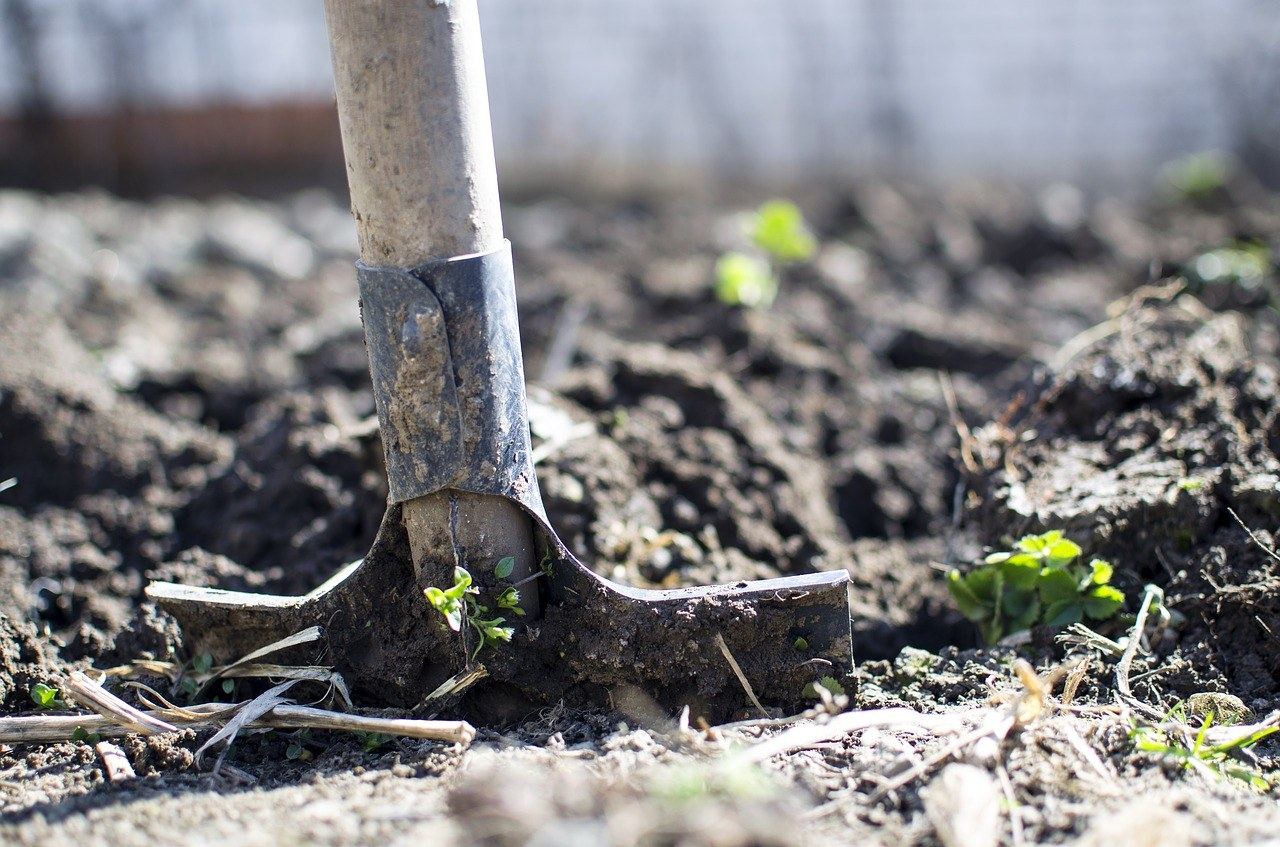 dig soil before Autumn ends