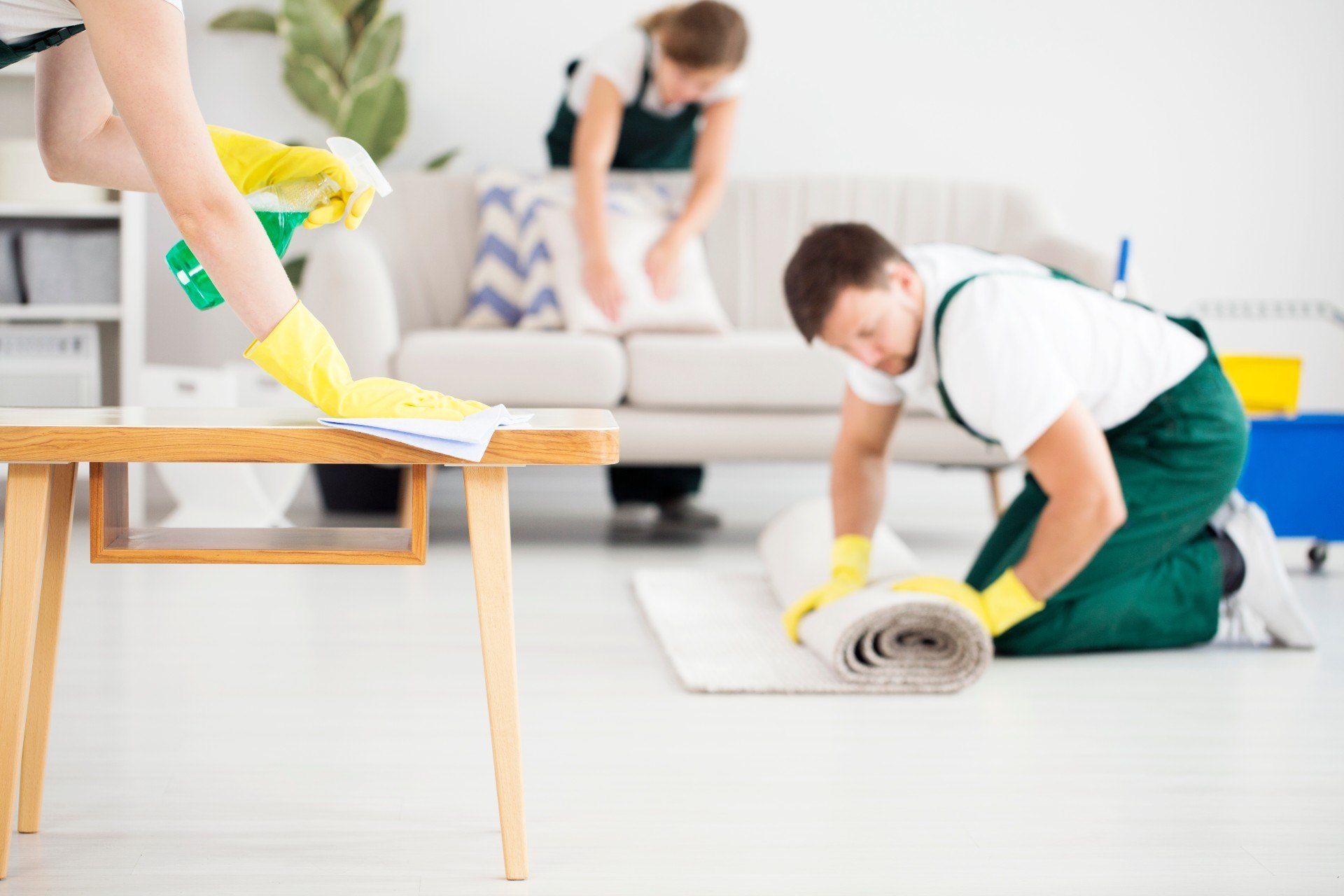 how-to-get-pet-urine-smell-out-of-carpet-1