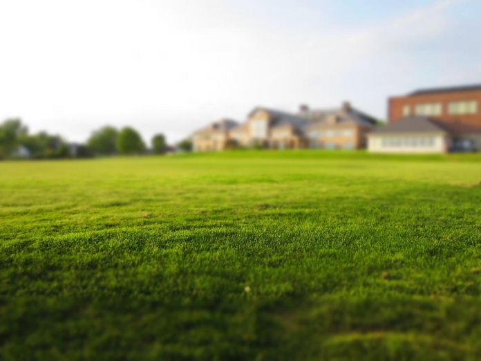 how-to-ensure-your-grass-is-perfectly-level-after-mowing