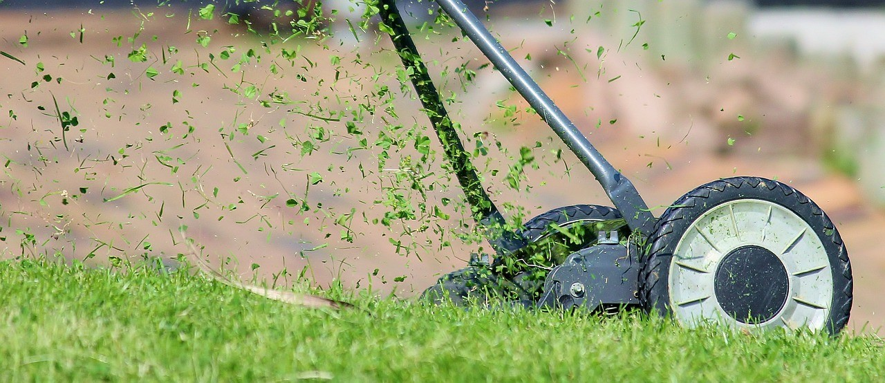 how-to-ensure-your-grass-is-perfectly-level-after-mowing-2