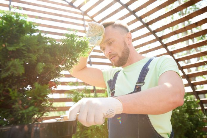 how-to-heat-a-greenhouse-featured
