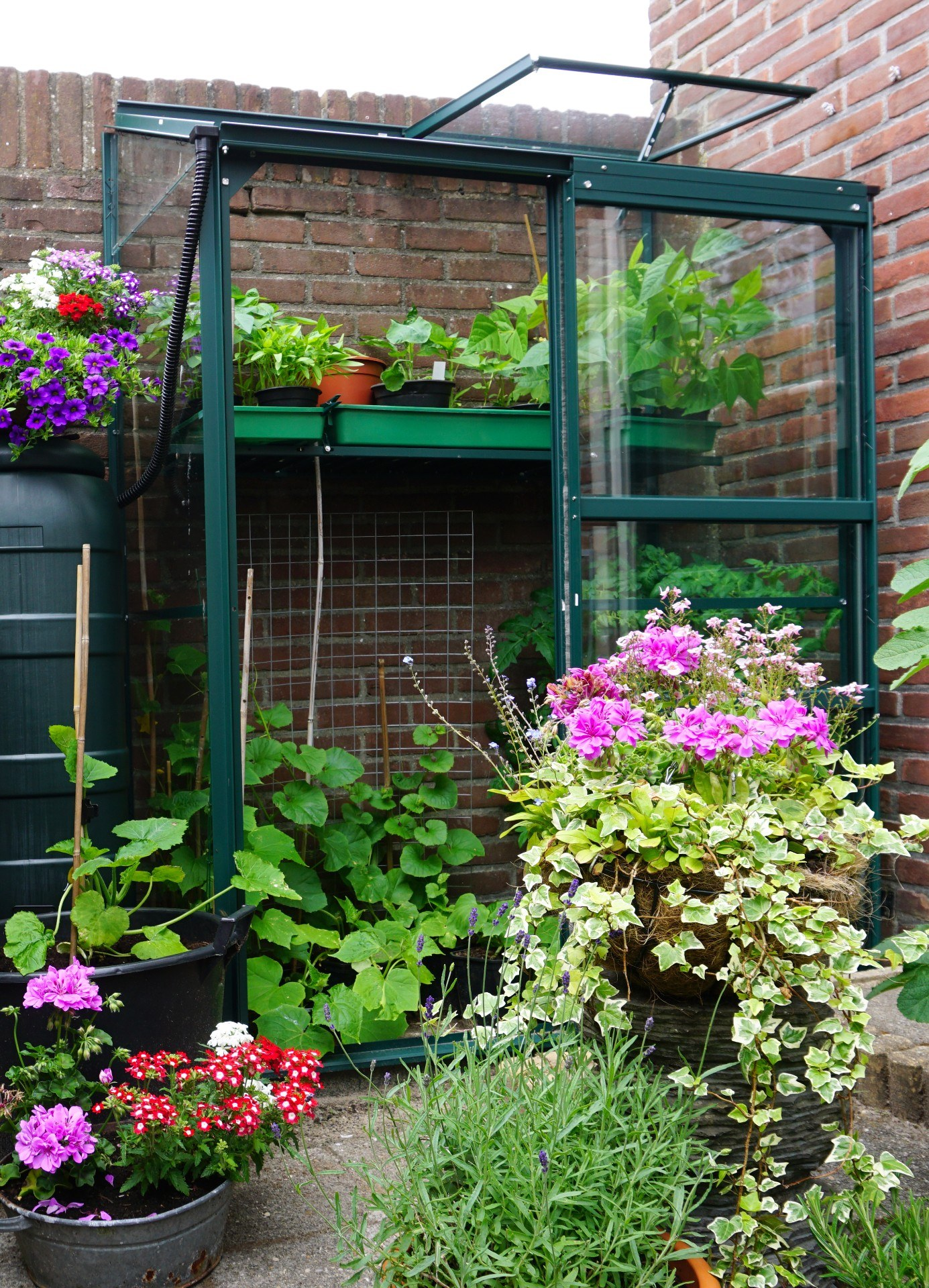 how-to-heat-a-greenhouse-1